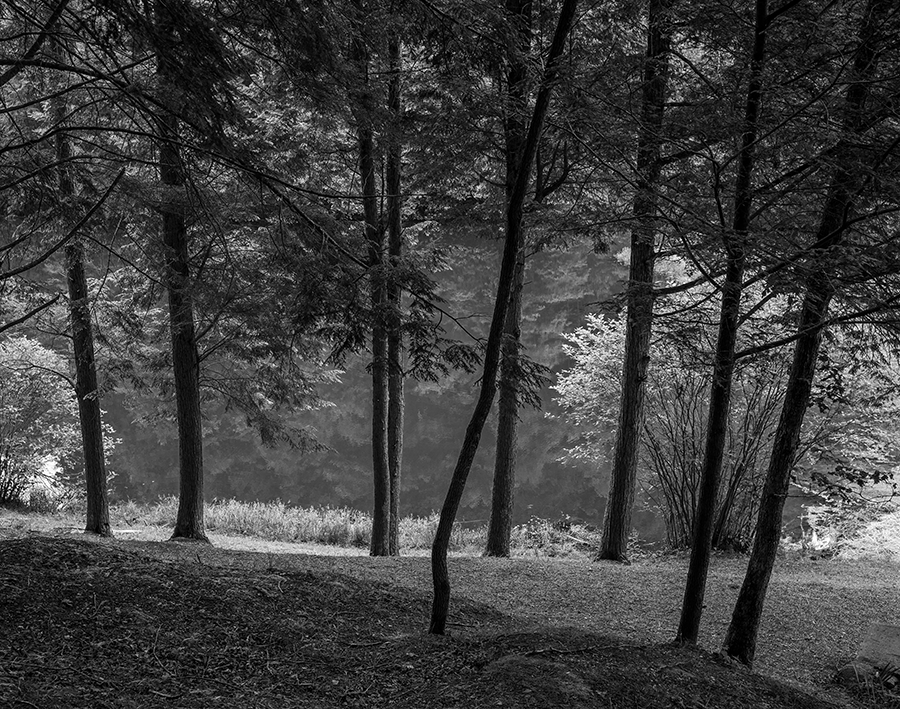 Blanton Forest, Harlan County by Guy Mendes